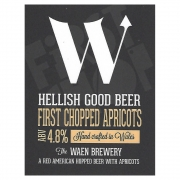 First Chopped Apricots 4.8%% by Waen Brewery