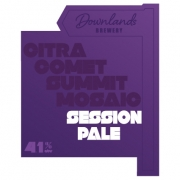 Session Pale 4.1% by Downlands Brewery