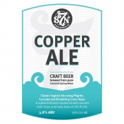 Copper Ale 3.8% by Severn Brewing