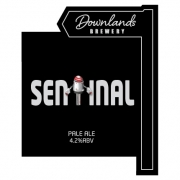 Sentinal 4.2% by Downlands Brewery